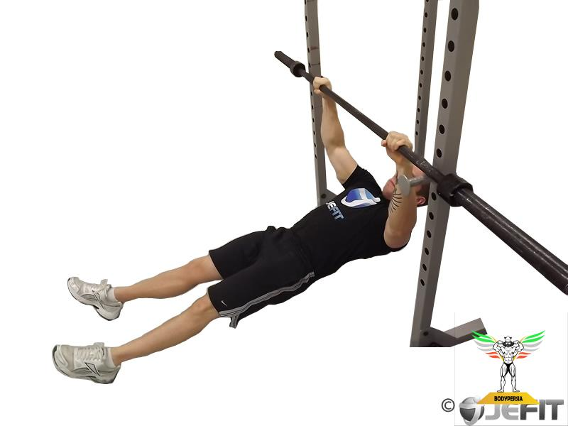 Barbell High Inverted Row ، زیر بغل هالتر معکوس