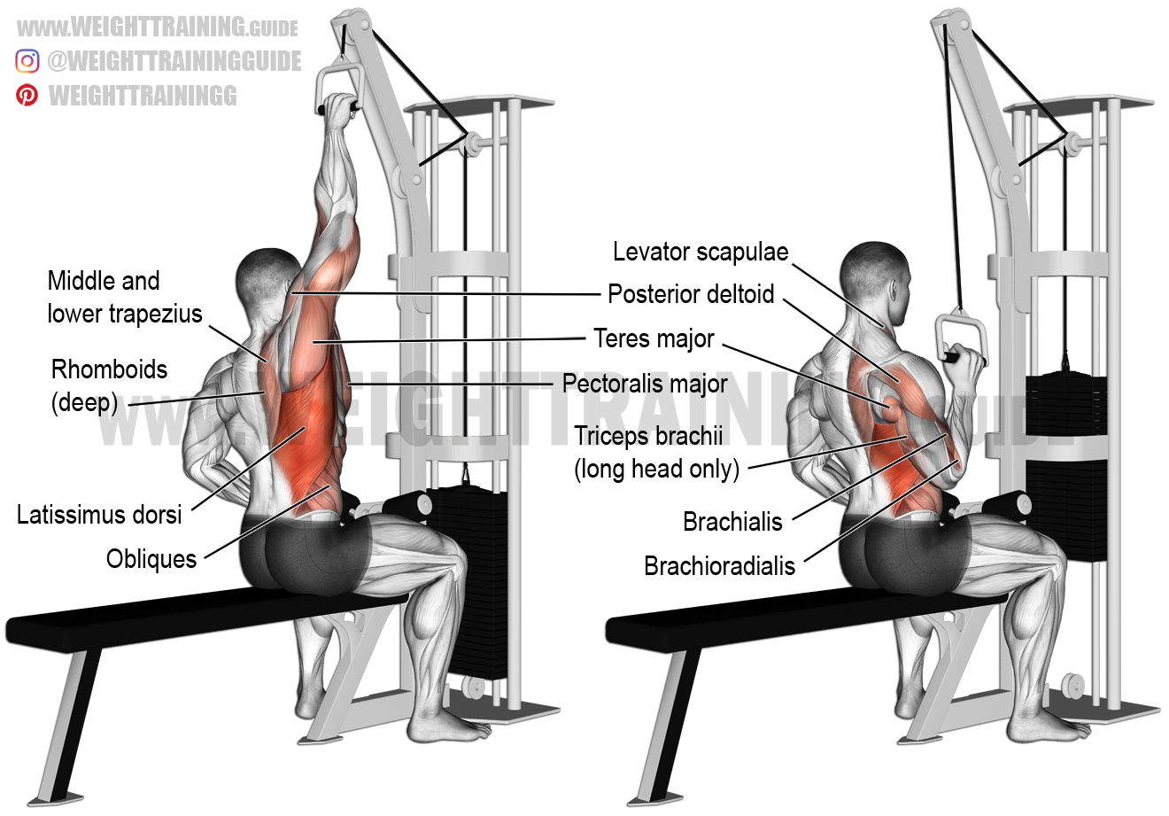 Cable One Arm Lat Pulldown ،