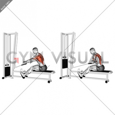Cable Rope Elevated Seated Row ، زیر بغل قایقی با طناب